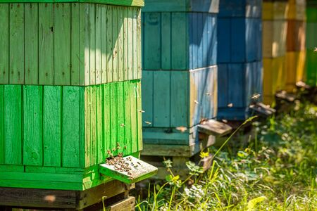 Wooden beehives in summer sunny day, Poland Banque d'images - 132234591