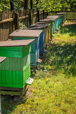 Wooden beehives with bees in countryside, Poland Banque d'images - 132234640