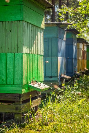 Handmade apiary in countryside, Poland in summer Banque d'images - 132072751