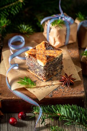 Homemade poppy seed cake for Christmas packed in paper