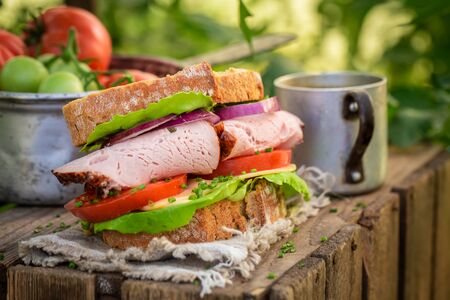 Homemade sandwich with lettuce, tomato and ham in summer greenhouse