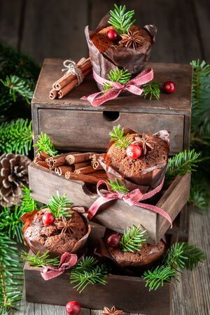 Lovely gingerbread muffins for Christmas with cranberry and ribbon Zdjęcie Seryjne