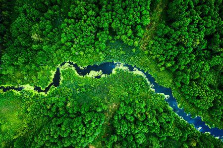 Increíbles algas florecientes en río verde, vista aérea