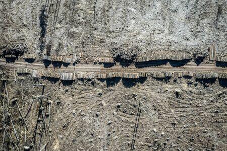 Flying above deforestation, logging, environmental destruction, Europe