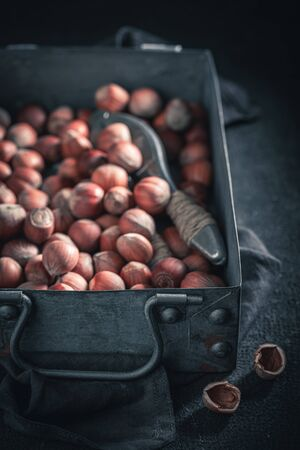 Group of hazelnuts in a rustic metal box Banque d'images