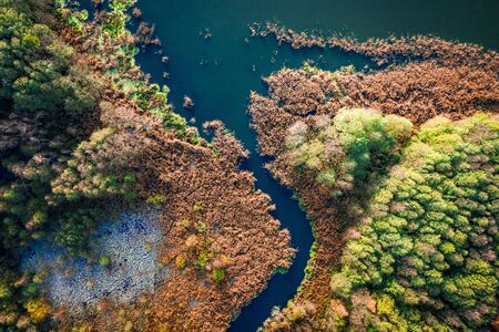 Top down view of autumn lake and swamp