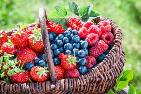 Closeup of healthy berry fruits in wicker basket