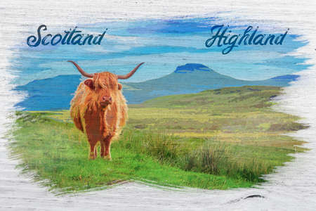 Watercolor painting of highland cow in Isle of Skye, Scotland