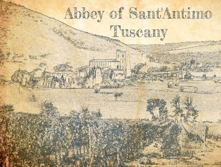 Sketch of Vineyards in Anney of Sant'Antimo, Tuscany, Italy