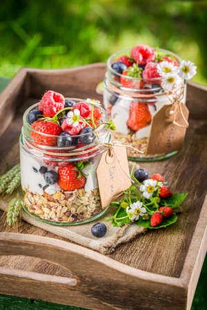 Breakfast with berries and yogurt in garden