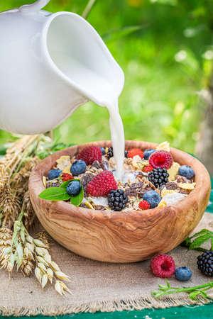Pouring milk into healthy muesli with berries in garden 版權商用圖片