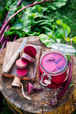 Top view of pickled beetroots with fresh vegetables