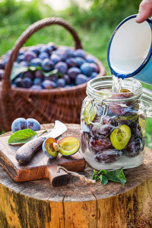 Prepared jar with plum for compote in summer garden