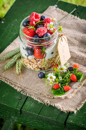 Summer granola with yogurt and berry fruits in garden