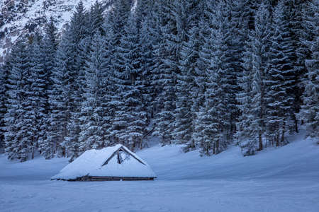 Covered by snow wooden cottage in Tatra mountain in winter, Poland
