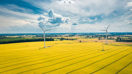Aerial view of wind turbines on golden field, aerial view, Poland Banco de Imagens
