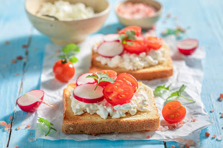 Healthy Toast with cottage cheese, radish and cherry tomato on blue table Stock fotó