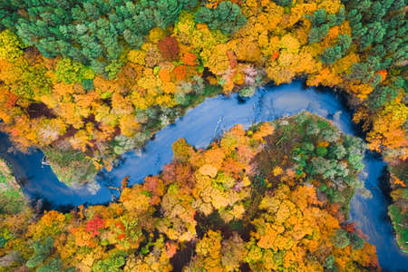Stunning view of colorful autumn forest and blue river, Poland, Europe Stock fotó