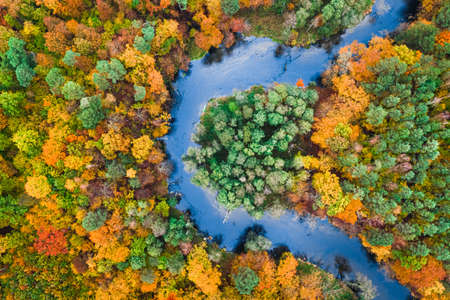 Aerial view of colorful autumn forest and blue river, Poland, Europe