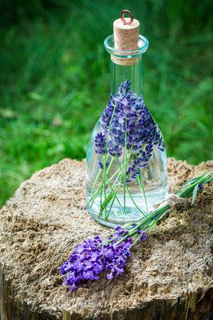 Homemade healthy tincture of lavender in summer garden