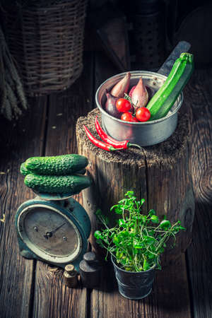 Old and wooden cellar with vegetables and fresh herbs
