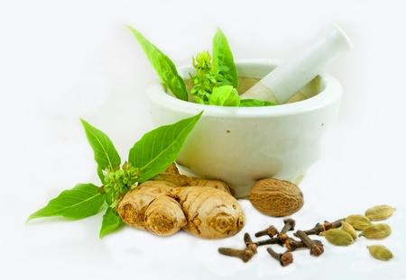 vijzel: Afbeelding van Ayurvedische geneeskunde voorbereiding het gebruik van kruiden uit de keuken