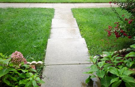 walkway between green grass Фото со стока