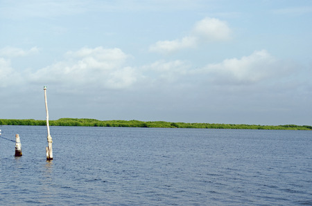 Landscape of water lagoon in Mexico 版權商用圖片