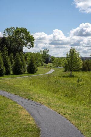 road in the park Archivio Fotografico - 148807726