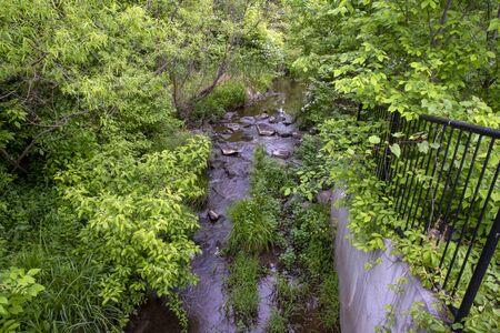 A stream flowing through woods Archivio Fotografico - 148158075