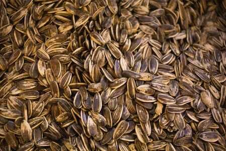 Edible nutrition Sunflower seeds and Sunflower grains background . Stock Photo