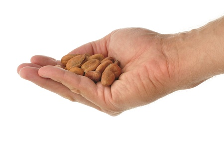 Handful of raw cacao beans isolated on white background Stock Photo - 10738267