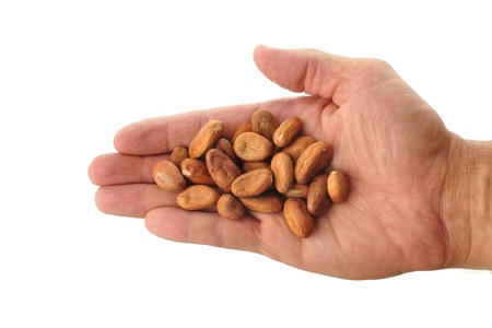 Superior view of handful of cacao beans isolated on white background Stock Photo - 10738268
