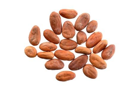 Rauwe cacao bonen op een witte achtergrond Stockfoto