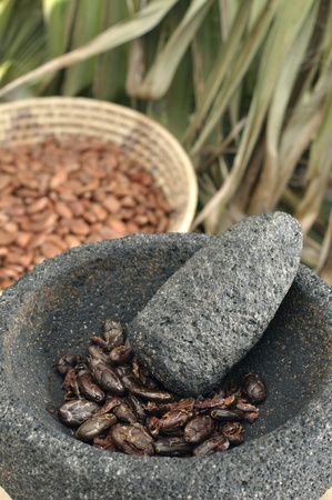 Raw cocoa beans with mortar and pesstle and indigenous background photo