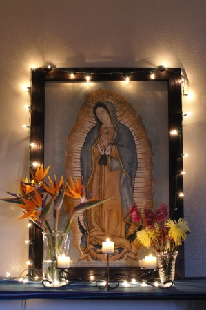 bloom bird of paradise: Altar dedicated to the Virgin of Guadalupe