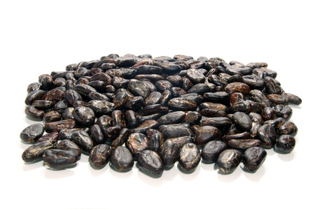 Cocoa beans isolated on white photo