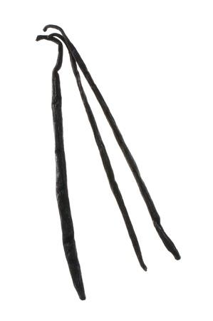 Three black vanilla beans isolated on white Stock Photo - 14219389