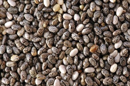 Macro closeup of pile of chia seeds photo