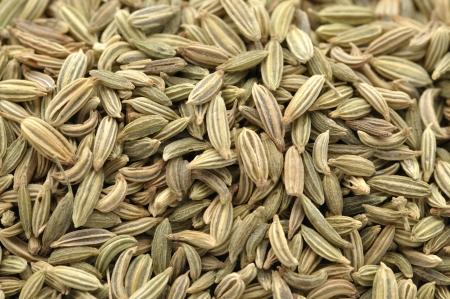 foeniculum vulgare: Macro closeup of pile of raw fennel seeds