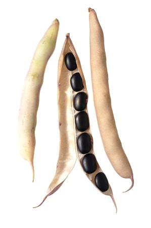 Open pod van zwarte bonen geà ¯ soleerd op wit Stockfoto