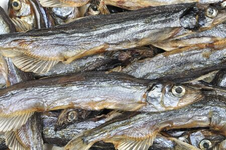 forage fish: Closeup of pile of dried salted capelin Mallotus villosus fish from Russia Stock Photo