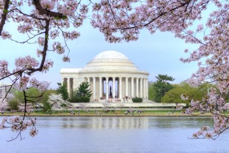 Thomas Jefferson memorial omlijst met mooie kersenbloesems en Potomac rivier getijbekken