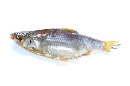 glycemic: Single dry Russian vobla fish on white background
