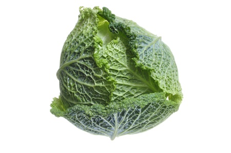 glycemic: Beautiful head of fresh green savoy cabbage isolated on white background