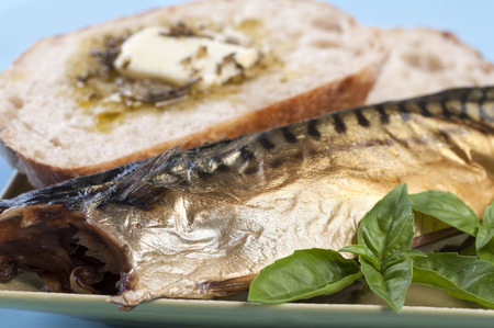 Closeup of smoked fish with fresh basil and sourdough bread on blue background