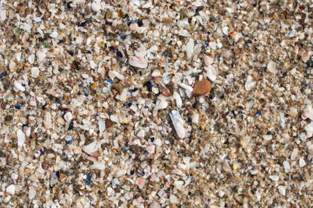 cloesup: Closeup of beautiful variety and assortment of natural beach sand, shell, and gravel on beach in La Jolla, California