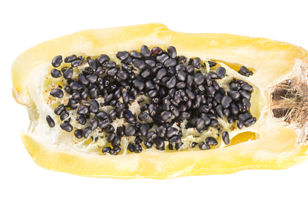 Macro closeup of inside of barrel cactus fruit and seeds on white Stok Fotoğraf - 26083700