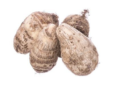 esculenta: Four Colocasia esculenta taro roots isolated on white