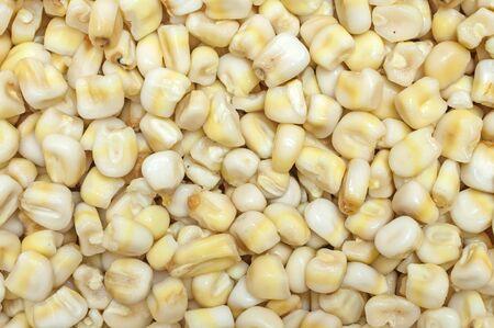 corn yellow: Primer de la pila de granos de ma�z amarillo regordetes nixtamalizado